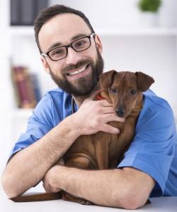 protégez votre chien avec l'assurance chien