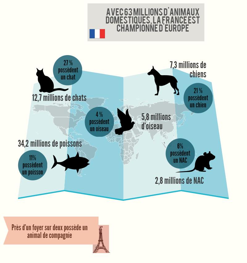 tous les chiffres-clé sur les animaux en France