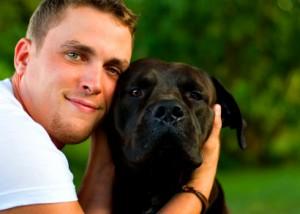 tout sur l'assurance animaux carrefour