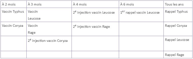 le calendrier de la vaccination chat